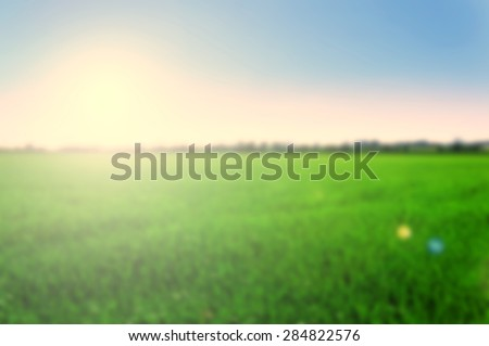 Blurred background of green plain field with blue sky - stock photo
