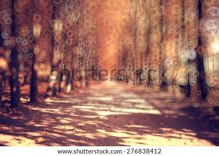 blurred background trees in autumn city park - stock photo