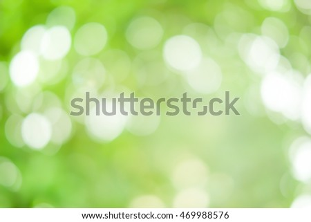 Blurred beautiful nature background:blurry of leaf and forest trees backdrop concept:blur of green natural park environment ecological ideal:spring summer :sunshine bright sparkle light:better life
