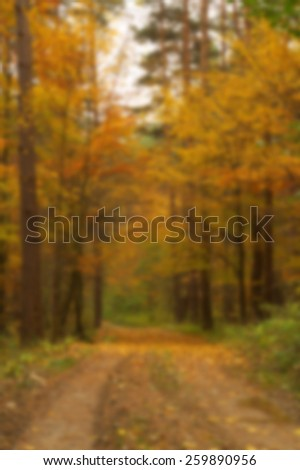Blurred beauty landscape autumn forest view with muddy road - stock photo