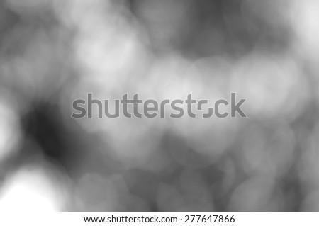 blurred bokeh of nature background in gray black-white tone - stock photo