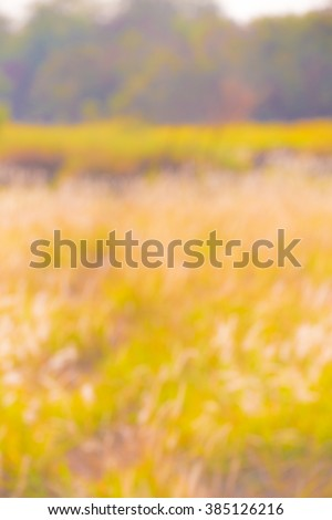 Blurred colourful meadows landscape background - stock photo