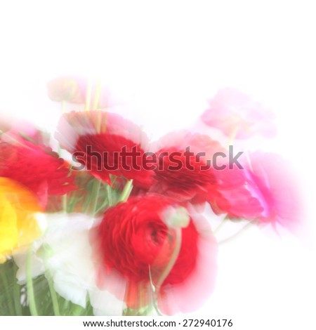 Blurred flowers background. Natural motion blurred buttercup flowers bouquet isolated on white background - stock photo