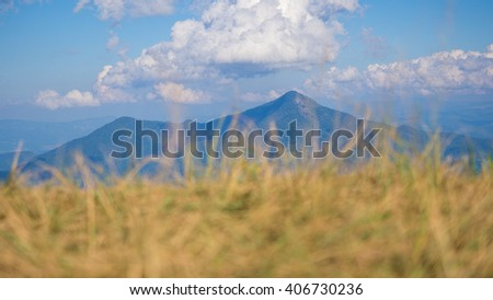 Blurred grass with mountain and sky background