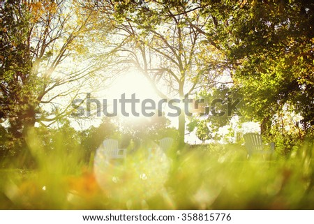 Blurred image of sunlight shining in a backyard - stock photo
