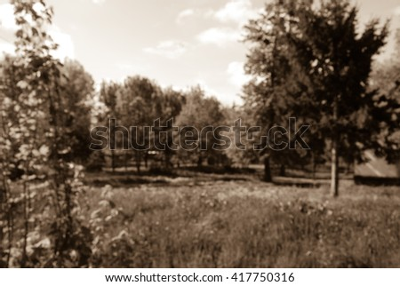 blurred landscape, park
