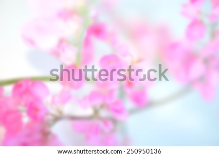 blurred pink flower for background - stock photo