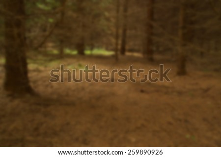 Blurred view of spruce forest with red ground - stock photo