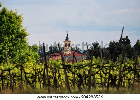 blurred vineyard in Italian Village, Piedmont