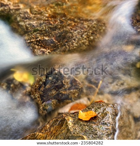 blurred water stream with autumn leaf - stock photo