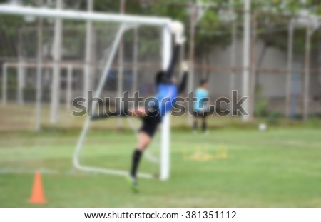 blurry,motion blur,Goalkeeper in action playing football,defend (soccer) - stock photo