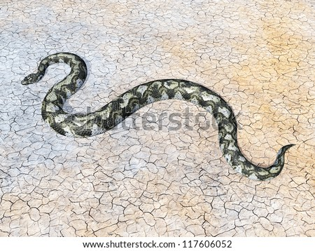 Boa Constrictor Computer generated 3D illustration - stock photo