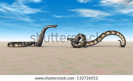 Boa Constrictors Computer generated 3D illustration - stock photo