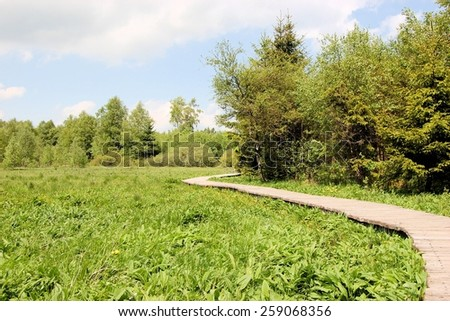 Boardwalk across swampland to protect the environment from damage, Rhoen mountain range, Germany - stock photo