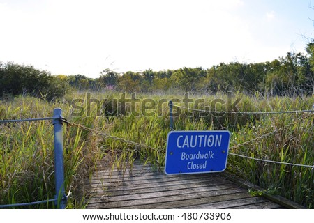 Boardwalk in the Wetland