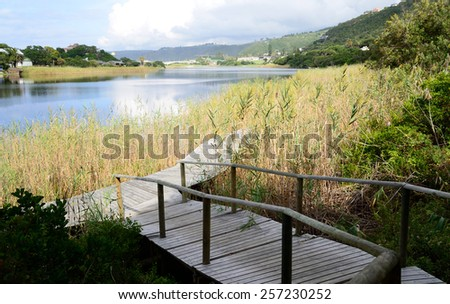 Boardwalk in the Wilderness - Garden Route South Africa  - stock photo