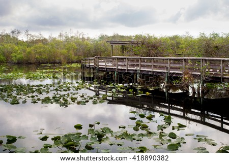 Boardwalk on the Anhinga Trail in the Everglades National Park early in the morning before the visitors arrive - stock photo