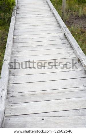 Boardwalk through Wetland - stock photo