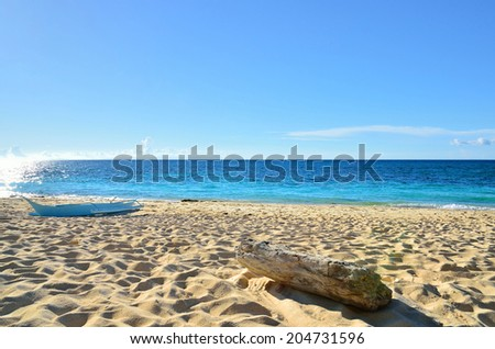Boat and wood on the tropical beach - stock photo