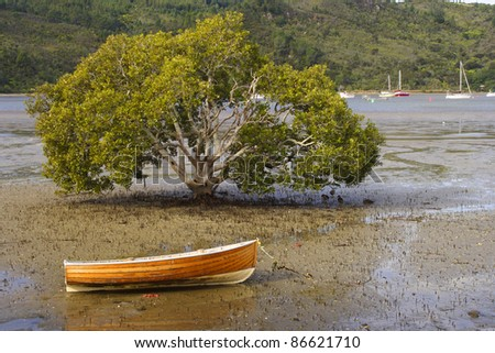 Boat at low tide beside a tree on the Coromandel peninsula on the North island of New Zealand - stock photo