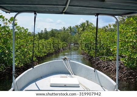 Boat through a small cut in the mangrove, archipelago of Bocas del Toro, Caribbean sea, Panama, Central America - stock photo