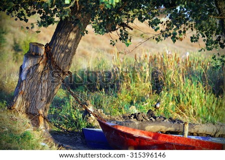 boat tied to a tree - stock photo