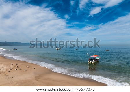 Boats and seabirds at the beach in Banderas bay - stock photo