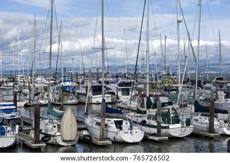 Boats at a harbor in San Francisco bay, California
