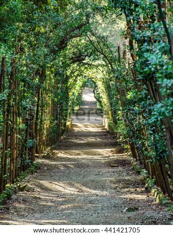 Boboli Gardens Florence Italy Stock Photo & Image (Royalty-Free ...