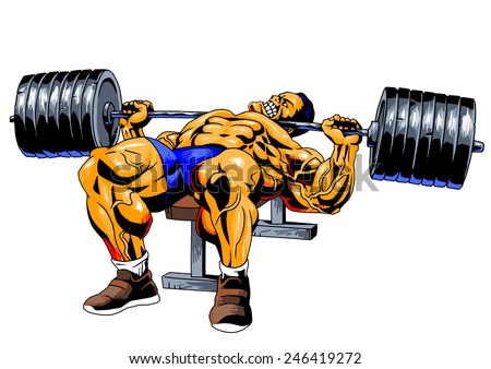 Bodybuilderbench Pressillustrationcolordrawingisolated On White ...