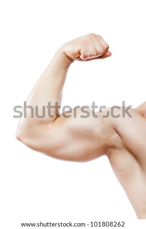 bodybuilder strong biceps athletic muscle man arm, sport hand fist showing his male muscles, isolated over white background - stock photo