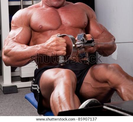 Bodybuilder training his back - stock photo