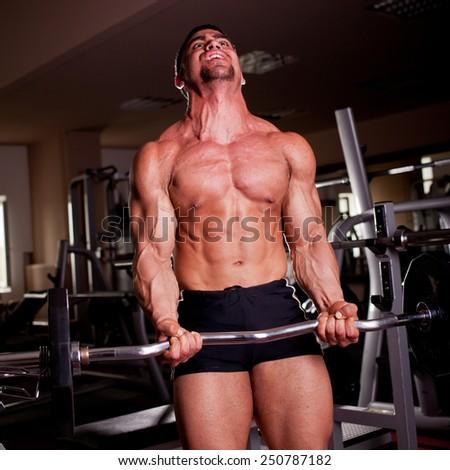 Bodybuilder training in a gym - stock photo