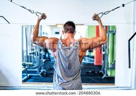 Bodybuilder working out the biceps in the gym. Sports concept - weightlifting in the fitness center - stock photo