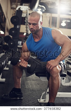 bodybuilder working out with bumbbells weights at the gym   - stock photo