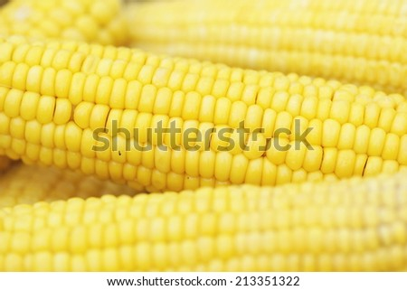 Boiled corn background