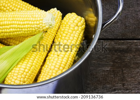 Boiled corn in a saucepan - stock photo