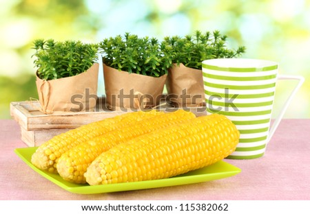 boiled corn on the pink table cloths on the background of nature - stock photo