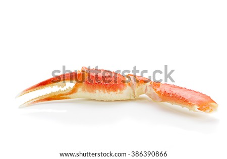 Boiled crab claws isolated on white background - stock photo