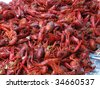 Boiled crawfish ready to eat - stock photo