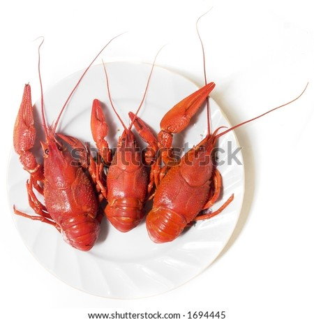 Boiled crayfishes on a plate - stock photo