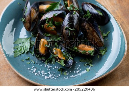 Boiled mussels with fresh chopped parsley and salt, studio shot, selective focus - stock photo
