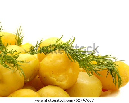 Boiled potato on a white background - stock photo