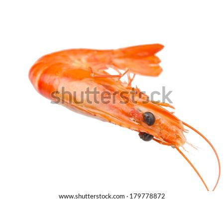 Boiled shrimp isolated on white background - stock photo