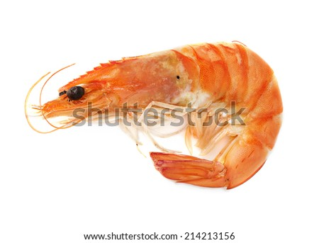 Boiled shrimp isolated on white background; - stock photo
