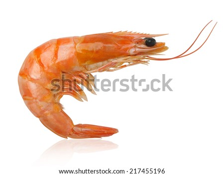 boiled shrimp isolated on white background - stock photo