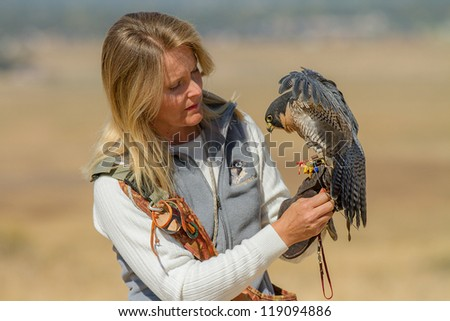 BOISE, IDAHO - OCTOBER 7 : Unidentified trainer at World Center for the Birds of Prey handles a peregrine falcon on October 7, 2012. - stock photo