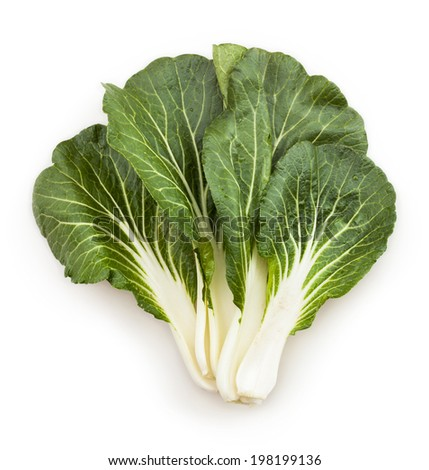 bok choy chinese cabbage leaves isolated - stock photo