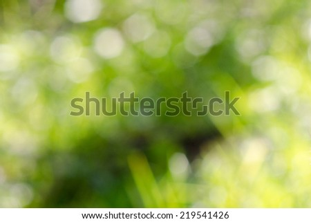 Boke on Smooth Pastel Abstract Gradient Background. - stock photo