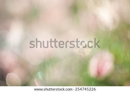 bokeh blurry natural abstract green background - stock photo